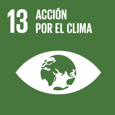 13 - Acción por el clima