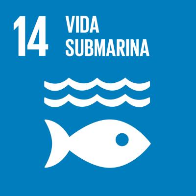 14 - Vida submarina