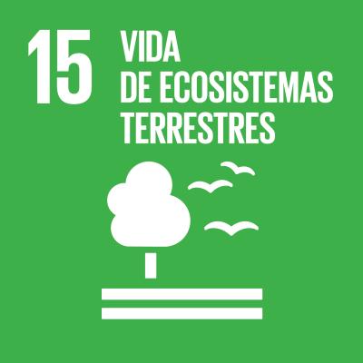 15 - Vida de ecosistemas terrestres